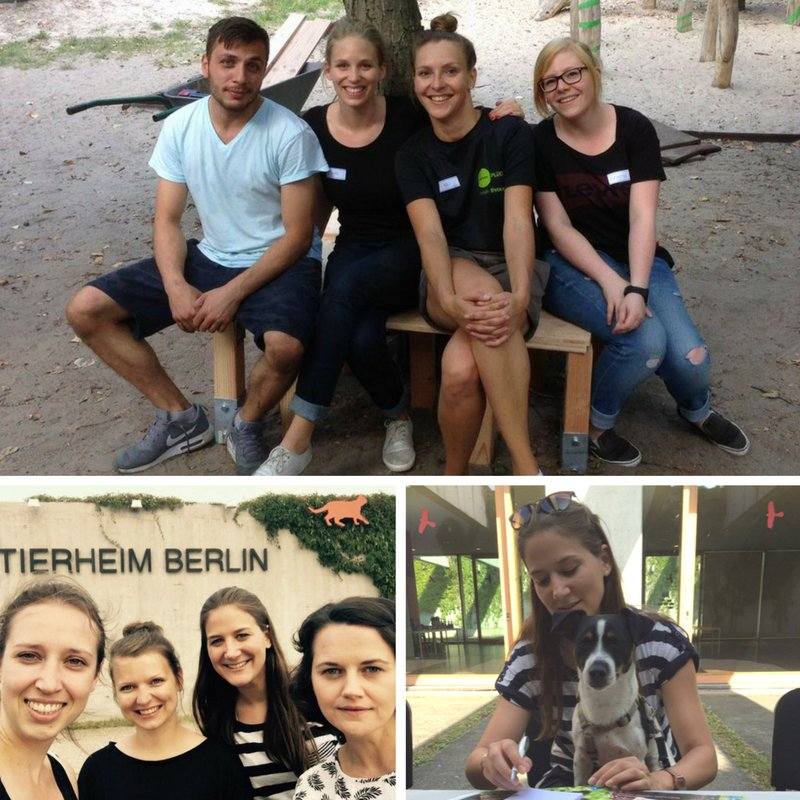 As part of Ketchum Social Responsibility Month, our Berlin colleagues lent a hand to a teaching project, welfare organization and an animal shelter.
