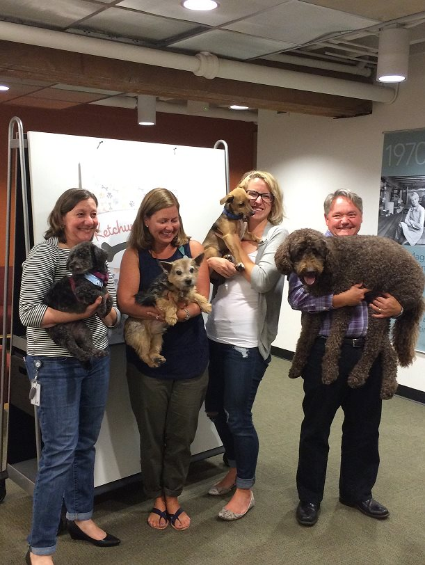 Ketchum San Francisco brought some furry colleagues to work during Bring Your Dog to Work Day.